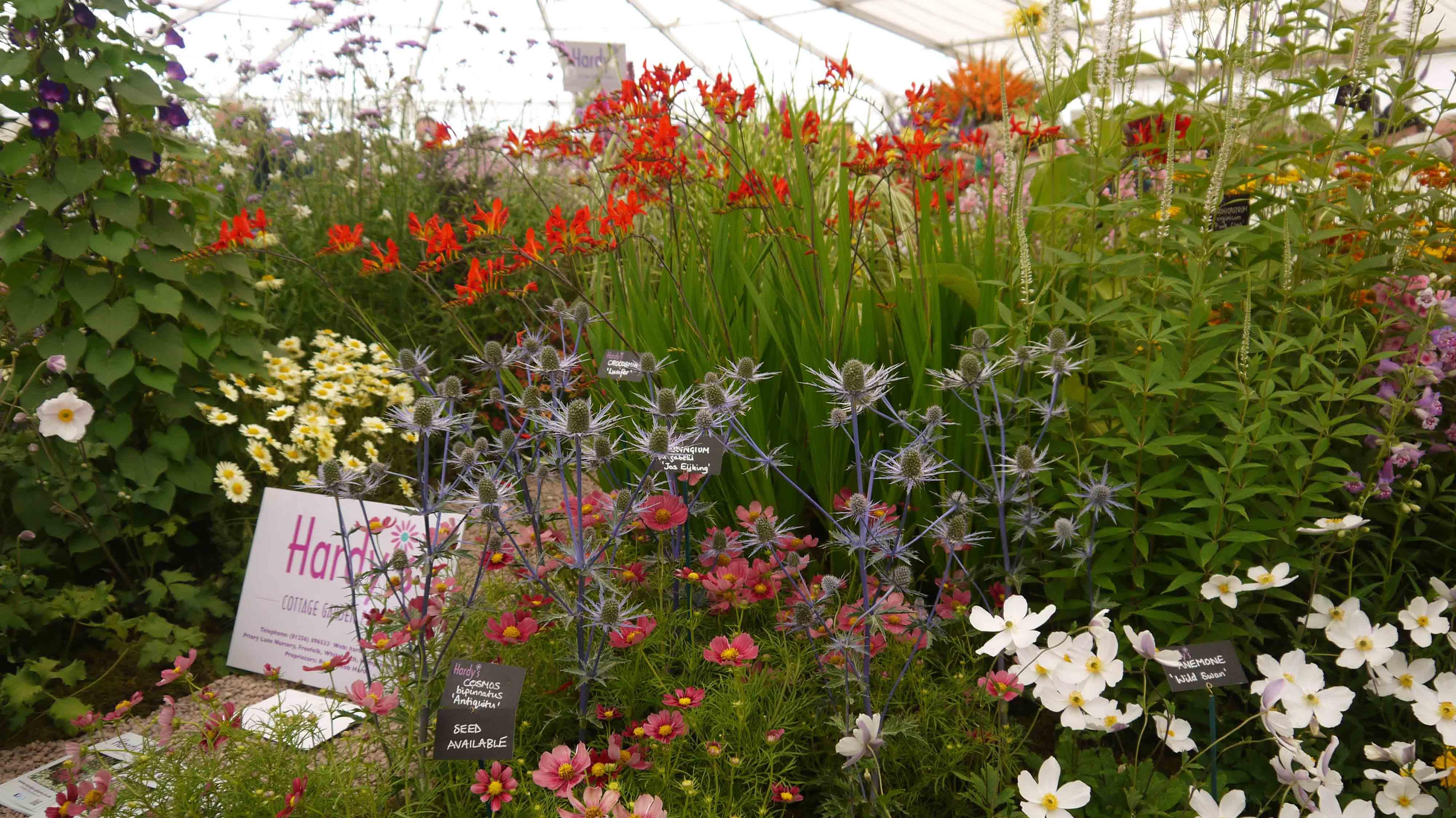 Garden Design Garden Design with Garden design cottage garden