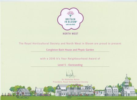 Our Level 5 Award for It's Your Neighbourhood